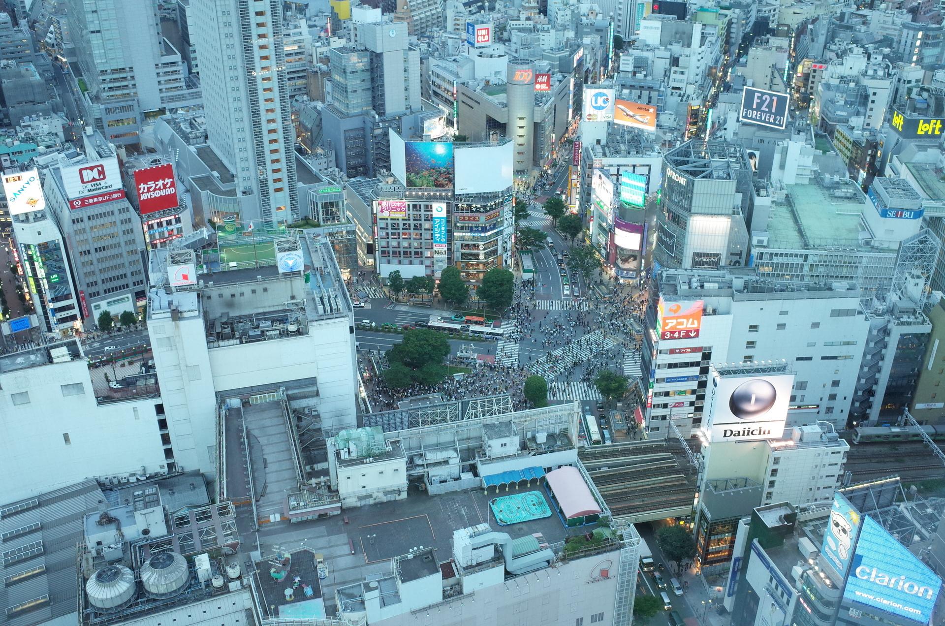 緑がたくさん!健康も安全も教育もサービスが充実した渋谷区の土地探し